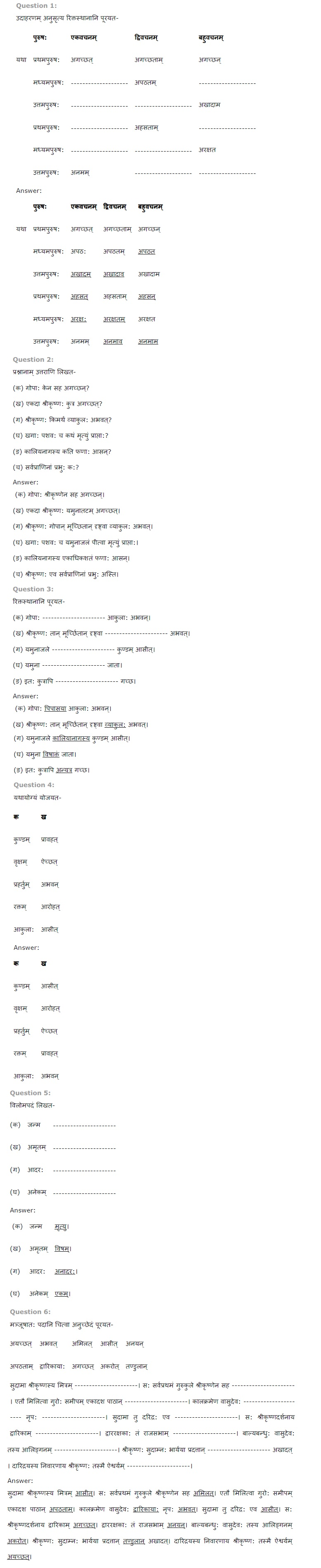 NCERT Solutions for Class 6 Sanskrit Ruchira for Chapter 14 यमुना विषरहिता जाता