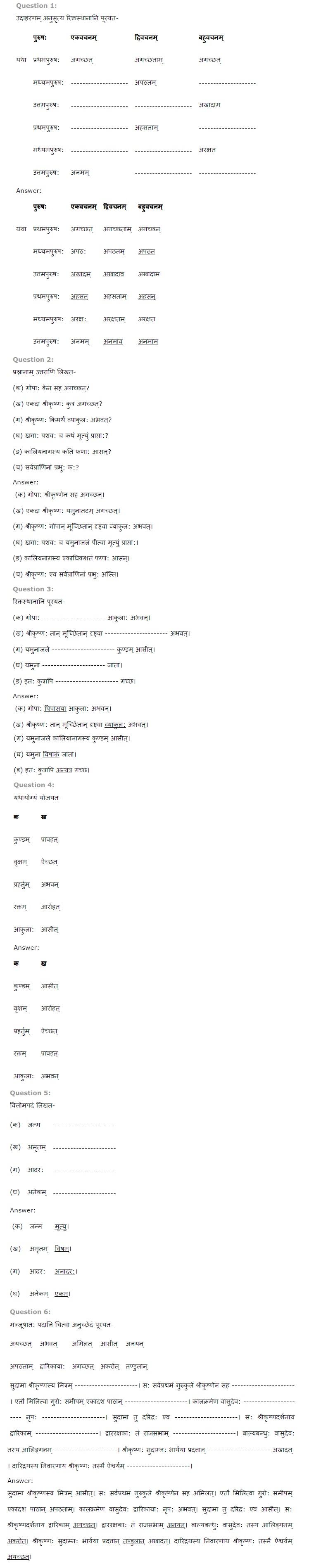 NCERT Solutions for Class 6 Sanskrit Ruchira for Chapter 14 यमुना विषरहिता जाता