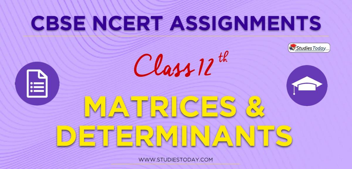 CBSE NCERT Assignments for Class 12 Matrices & Determinants
