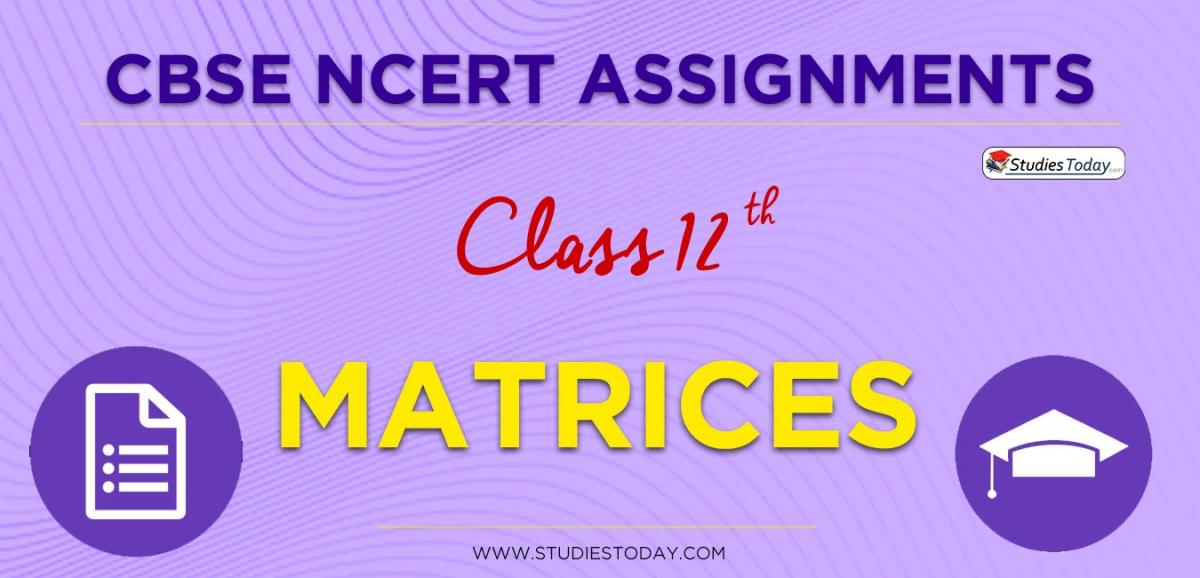 CBSE NCERT Assignments for Class 12 Matrices