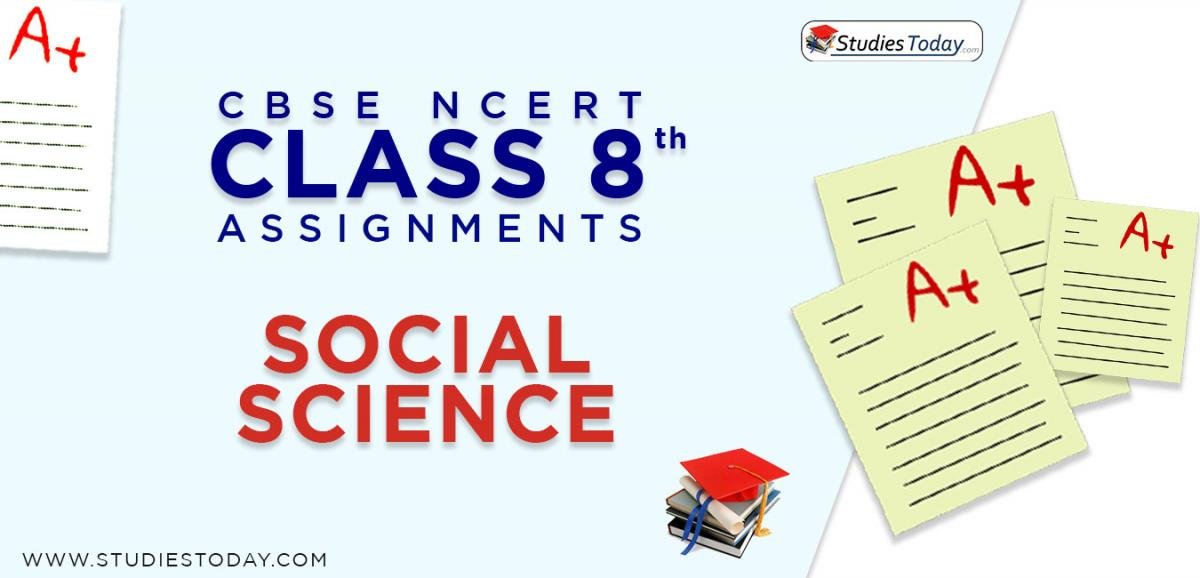 CBSE NCERT Assignments for Class 8 Social Science