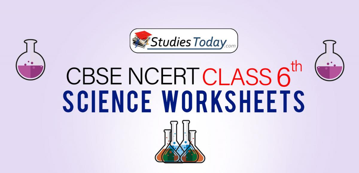CBSE NCERT Class 6 Science Worksheets