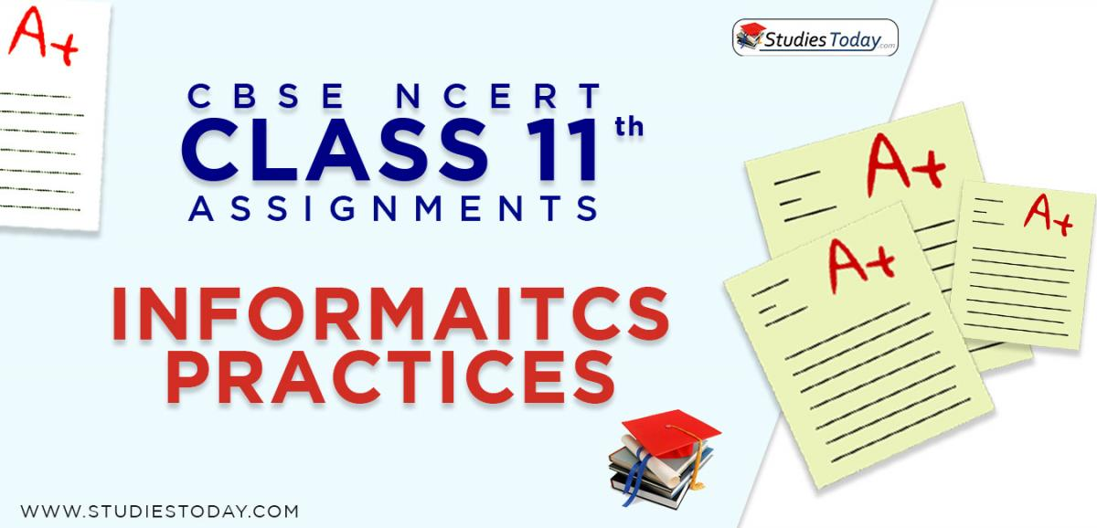 CBSE NCERT Assignments for Class 11 Informatics Practices