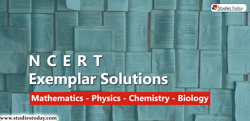 ncert solutions problems