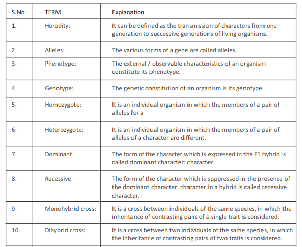 CBSE Class 12 Biology Principles of Inheritance and