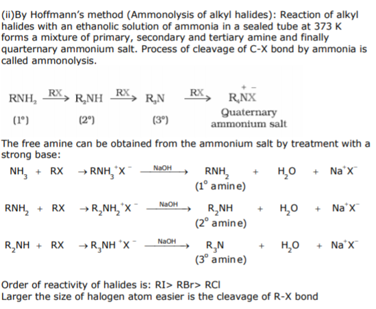 CBSE Class 12 Chemistry - Amines Chapter Notes Concepts for