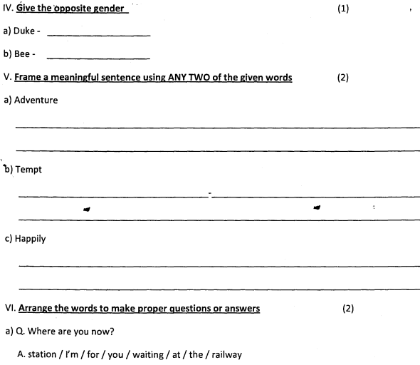 CBSE Class 4 English Question Paper Set H