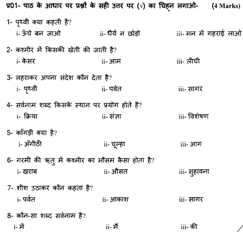 class_4_Hindi_Question_Paper_3