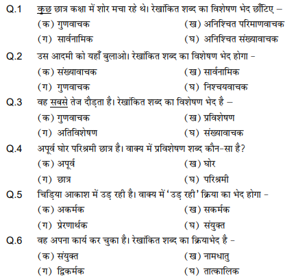 CBSE Class 9 PSA Hindi Language MCQs, Multiple Choice Questions for