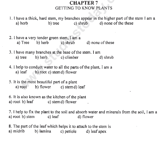 CBSE Class 6 Science Getting to Know Plants MCQs Set C