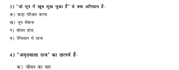CBSE Class 9 Hindi Conventions MCQs-