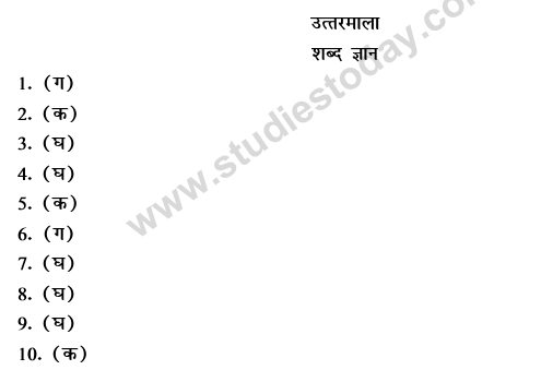 CBSE Class 9 Hindi Conventions MCQs-28