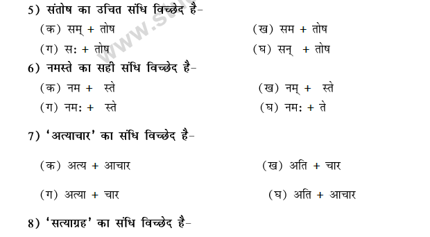 CBSE Class 9 Hindi Conventions MCQs-30