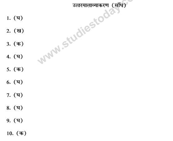 CBSE Class 9 Hindi Conventions MCQs-32