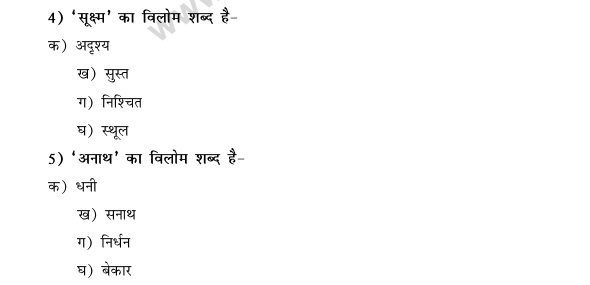 CBSE Class 9 Hindi Conventions MCQs-42