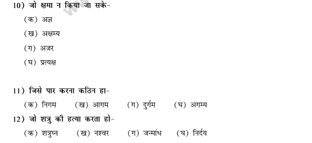 CBSE Class 9 Hindi Conventions MCQs-49