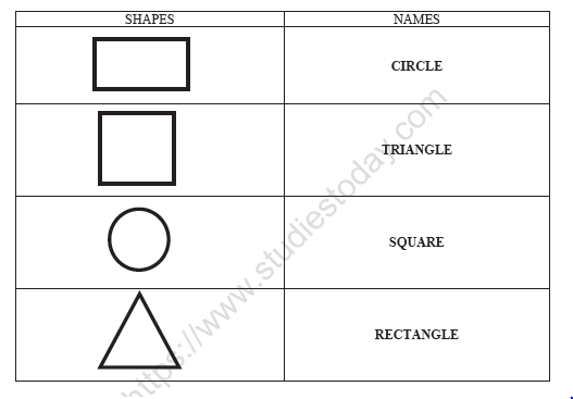 CBSE Class 1 English Match The Shapes Worksheet Practice Worksheet For  English