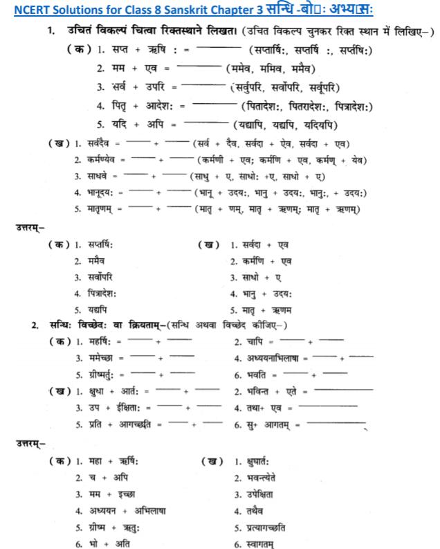 NCERT Solutions Class 8 Sanskrit Chapter 3 Sandhi Bodh Abhyas