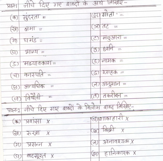 CBSE_Class_4_Hindi_Sample_Paper_03