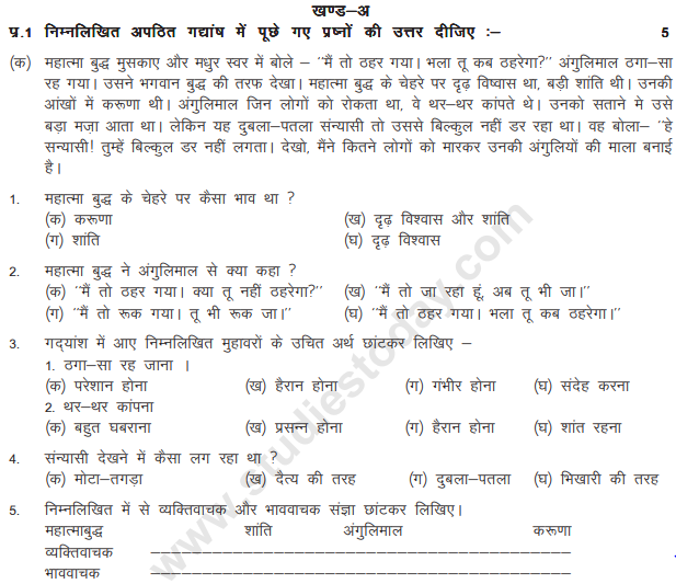 Class_5_Hindi_Question_Paper_11