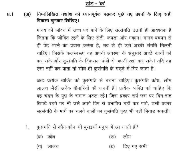 CBSE Class 6 Hindi Sample Paper Set V