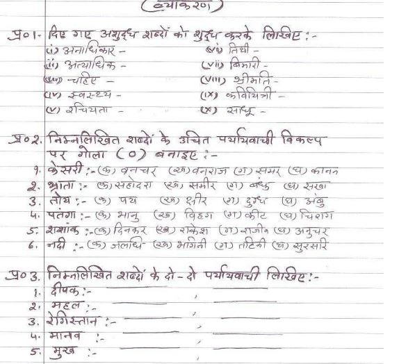 Class_6_Hindi_Sample_Pape_27