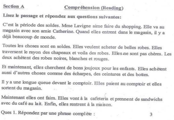 cbse class 8 french sample paper set f. Black Bedroom Furniture Sets. Home Design Ideas