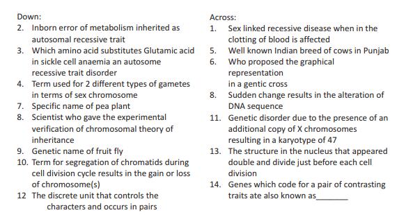 CBSE Class 12 Biology Molecular Basis of Inheritance Cross Word