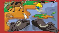 NCERT Solutions Class 3 EVS Chapter 1 Poonams Day out