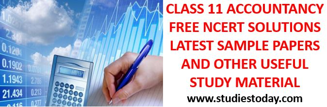 questions database to get better marks in class 11 accountancy examination class_11_accountancy_notes_ncert_solutions