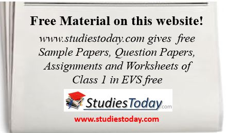 Class 1 Environmental Studies Worksheets Solved Sample