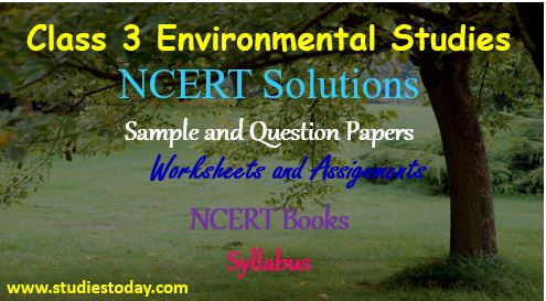Class 3 Environmental Studies NCERT Solutions Sample Papers