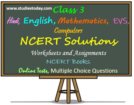 Class 3 Mathematics Hindi English EVS NCERT Solutions Sample Papers