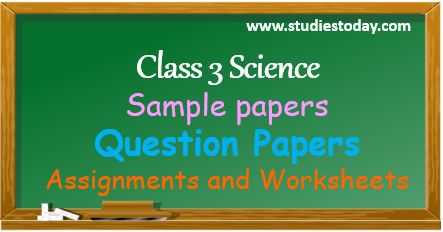 class_3_science_ncert_solution_worksheet_sample_paper_questiont