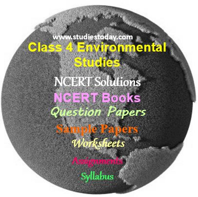EVS Question paper for Class 4 | Environmental Studies Class IV CBSE