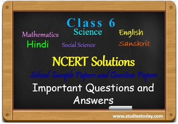 class_6_ncert_solutions_ncert_book_sample_papers
