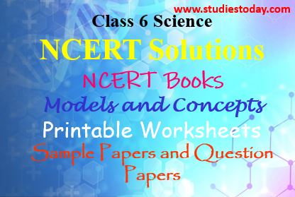 CBSE Class 6 Science Worksheets | CBSE Class VI Science